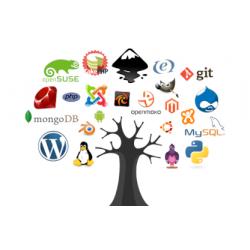 Installazione Sito Web